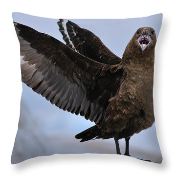 South Polar Skua Throw Pillow by Tony Beck