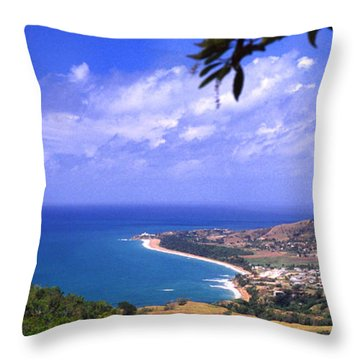 Southeast Coast  Panoramic Route Throw Pillow by Thomas R Fletcher