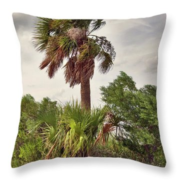Throw Pillow featuring the photograph Southern Breeze by Margaret Palmer