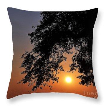 Southern Sky Throw Pillow