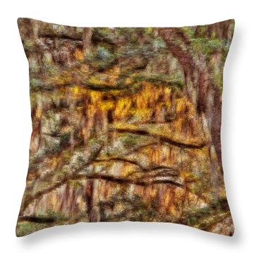 Spanish Moss And Sunset Throw Pillow