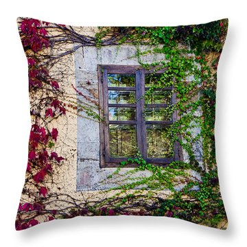 Throw Pillow featuring the photograph Spanish Window by Don Schwartz