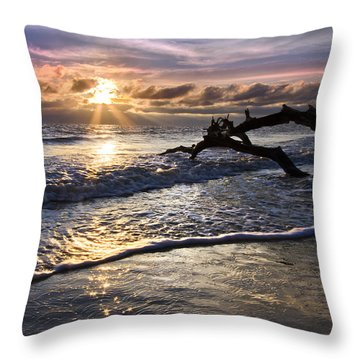 Sparkly Water At Driftwood Beach Throw Pillow by Debra and Dave Vanderlaan