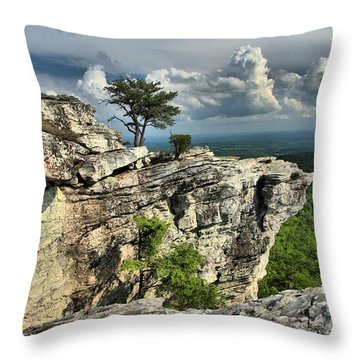 Sparse Vegetation Throw Pillow by Adam Jewell