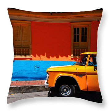 Special Delivery Throw Pillow by Skip Hunt