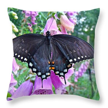 Spicebush Swallowtail Butterfly On Foxgloves - Papilio Troilus Throw Pillow by Mother Nature