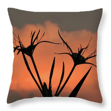 Spider Lilies At Sunset Throw Pillow