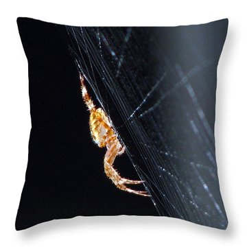 Spider Solitaire Throw Pillow