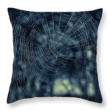 Throw Pillow featuring the photograph Spider Web by Matt Malloy