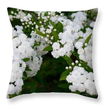 Spirea Blooms Throw Pillow by Maria Urso