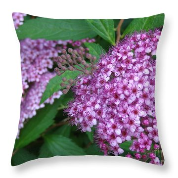 Spirea Throw Pillow