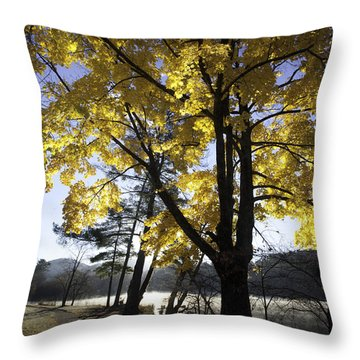 Spirit By The Lake Throw Pillow by Rob Travis