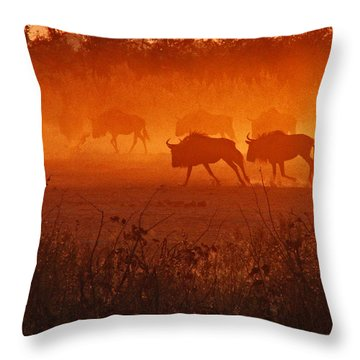 Throw Pillow featuring the photograph Spirit Dance by William Fields