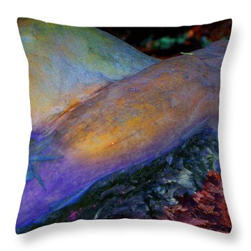 Throw Pillow featuring the digital art Spirit's Call by Richard Laeton
