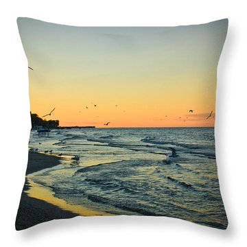 Throw Pillow featuring the photograph Spirit's Journey by Sara Frank