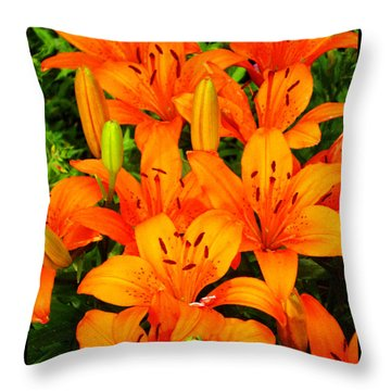 Throw Pillow featuring the photograph Spiritual Bouquets At St. Francis Cathedral by Susanne Still