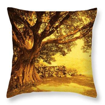Spiritual Place. Wicklow Mountains. Ireland Throw Pillow by Jenny Rainbow