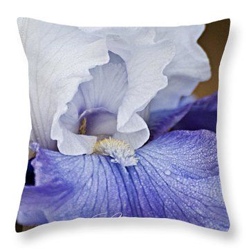 Splendor Throw Pillow by Christopher Gaston
