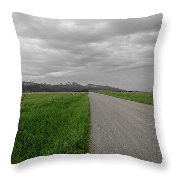 Split Line Throw Pillow by Roderick Bley