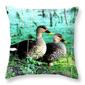 Throw Pillow featuring the photograph Spot Bill Ducks by Pravine Chester