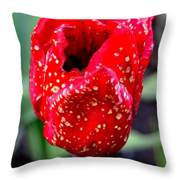 Spots On A Tulip Throw Pillow by Pravine Chester