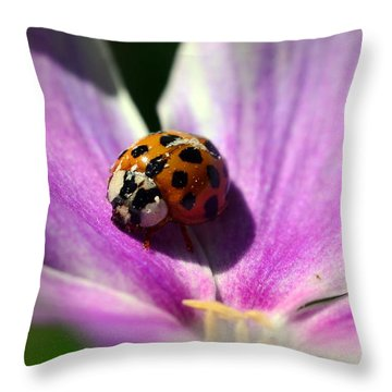 Spotted Lady Throw Pillow