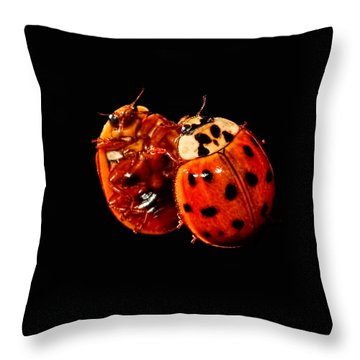 Spotted Ladybug In Reflection Throw Pillow