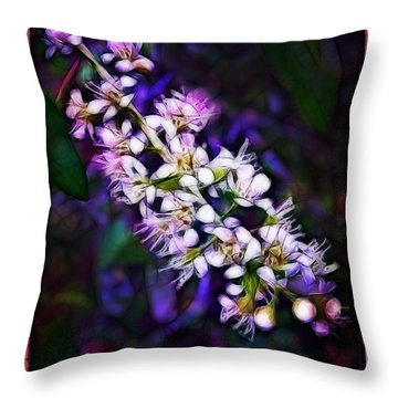 Spray Of Light Throw Pillow by Judi Bagwell
