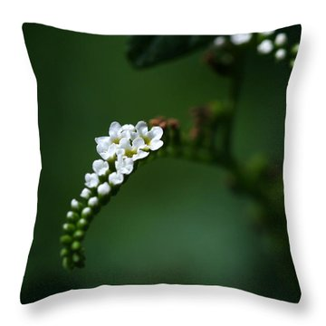 Spray Of White Flowers Throw Pillow by Sabrina L Ryan