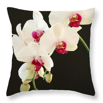 Spray Of White Orchids Throw Pillow
