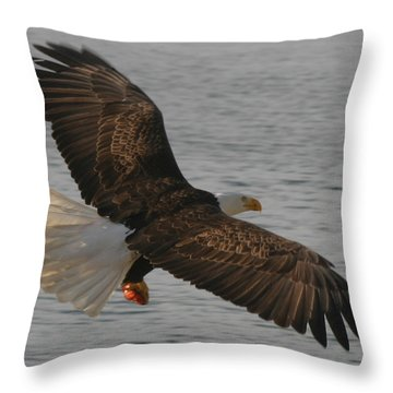 Throw Pillow featuring the photograph Spread Eagle by Kym Backland