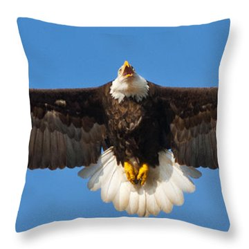 Throw Pillow featuring the photograph Spread Eagle by Randall Branham