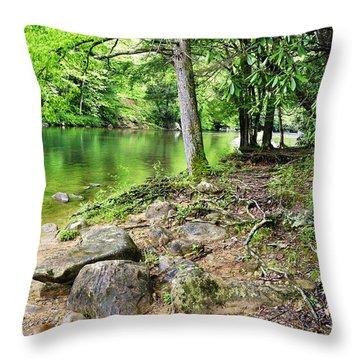 Spring Along Cranberry River Throw Pillow by Thomas R Fletcher