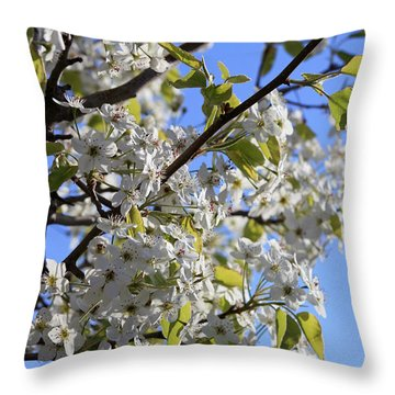 Throw Pillow featuring the photograph Spring Blooms by Kay Novy