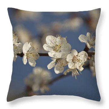 Spring Blossoms Throw Pillow by Ayhan Altun