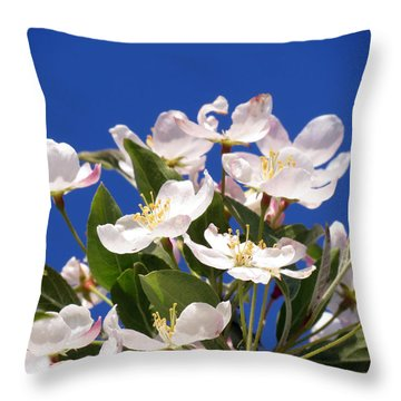 Throw Pillow featuring the photograph Spring Blossoms by Darleen Stry