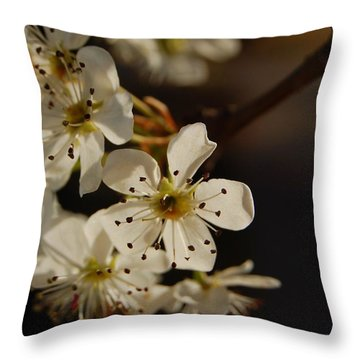 Spring Blossoms I Throw Pillow