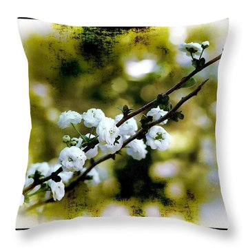 Throw Pillow featuring the photograph Spring Bough by Judi Bagwell