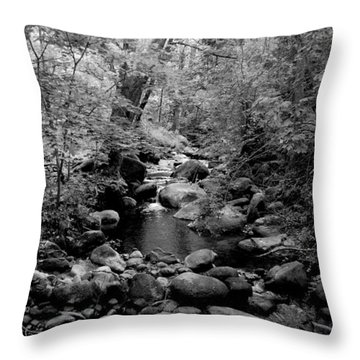 Spring Creek Throw Pillow by Kathleen Grace