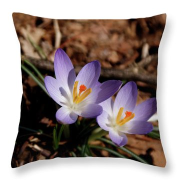 Throw Pillow featuring the photograph Spring Crocus by Paul Mashburn