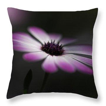 Spring Daisy Throw Pillow by Saija  Lehtonen