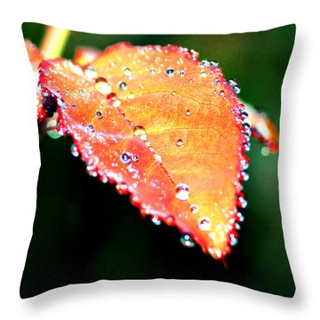 Spring Dew Throw Pillow