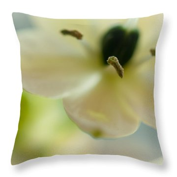 Spring Feeling Throw Pillow by Jenny Rainbow