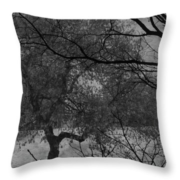 Spring For Leaves  Throw Pillow by Jerry Cordeiro