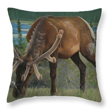 Spring Gazing Throw Pillow