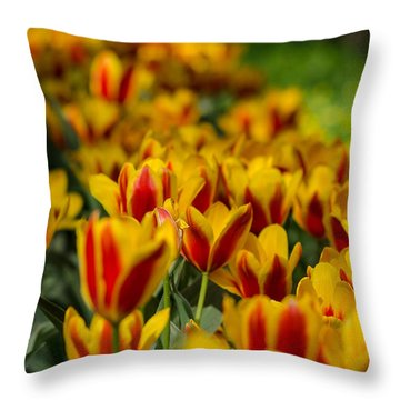 Spring Mood Throw Pillow