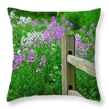 Spring Phlox 6074 Throw Pillow by Michael Peychich