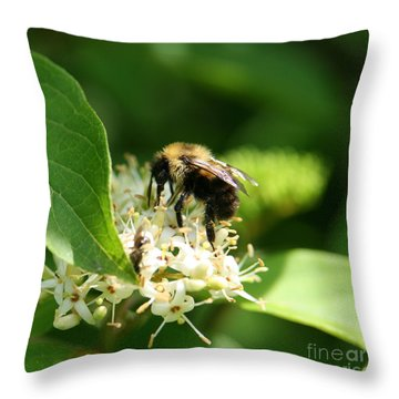 Spring Pollination Throw Pillow by Neal Eslinger