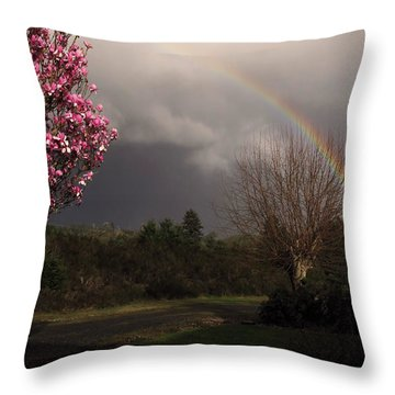 Spring Rainbow Throw Pillow by Katie Wing Vigil