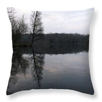 Throw Pillow featuring the photograph Spring Reflection  by Gerald Strine